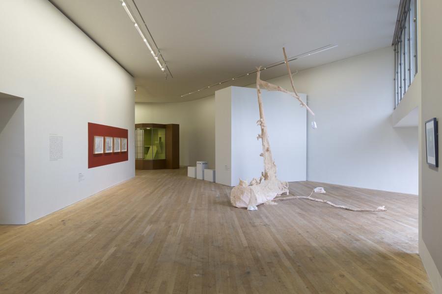 Images: Lewis Glucksman Gallery.